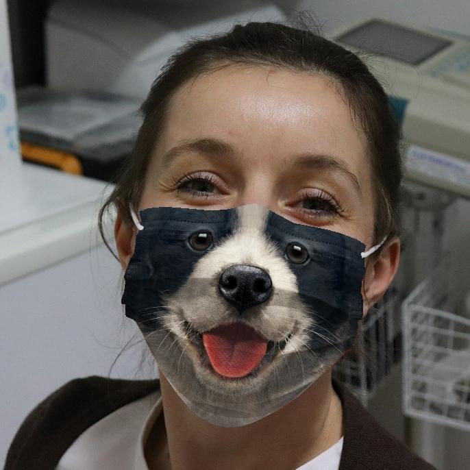 Border Collie Puppy Cloth Face Mask banner
