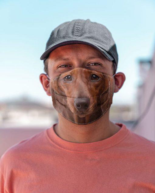Red short hair dachshund 3D Mask 2