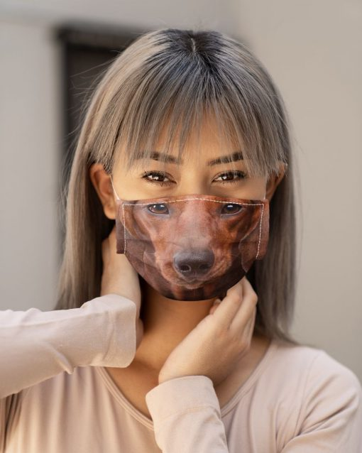 Red short hair dachshund 3D Mask 4