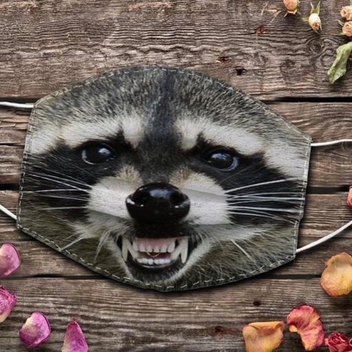 Raccoon Smile face mask