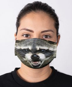 Raccoon Smile face mask3