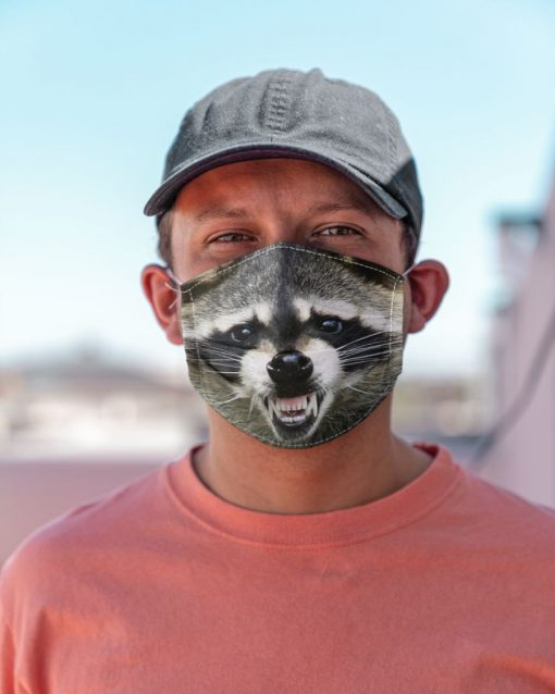 Raccoon Smile face mask4