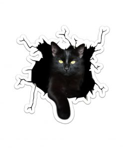 Black Cat Crack Sticker