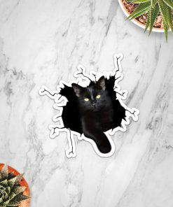 Black Cat Crack Sticker3
