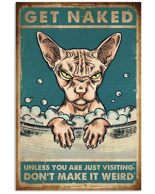 Cat Get naked unless you are just visiting don't make it weird poster