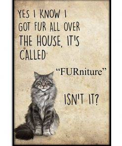 Yes I know I got fur all over the house It's call FURniture Isn't it Cat poster 11