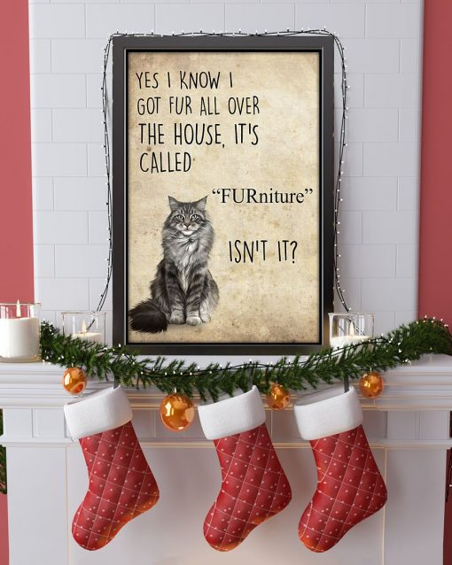 Yes I know I got fur all over the house It's call FURniture Isn't it Cat poster 4