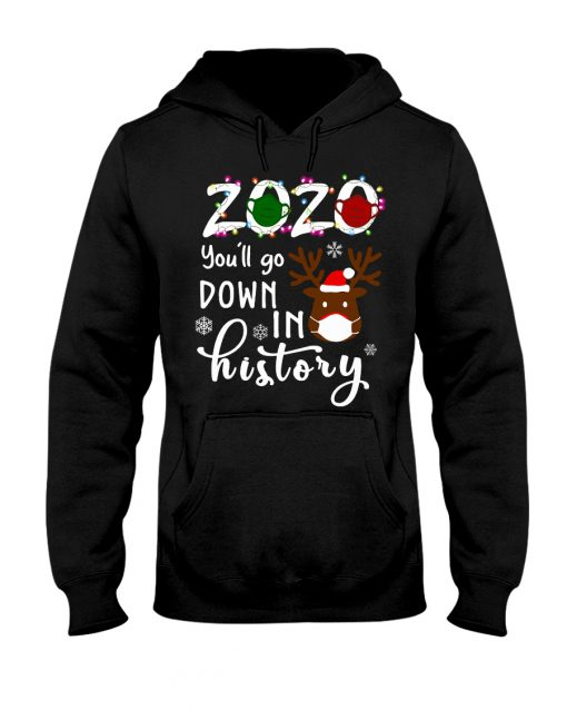 2020 You'll go down in history Christmas hoodie