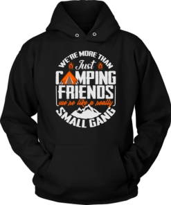 We are More Than Just Camping Friends We are Like A Really Small Gang Hoodie