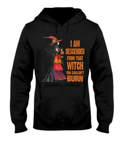 I am descended from that witch you couldn't burn hoodie