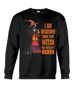 I am descended from that witch you couldn't burn sweatshirt