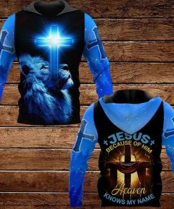 Jesus Because Of Him Heaven Knows My Name Lion 3D All Over Print Hoodie