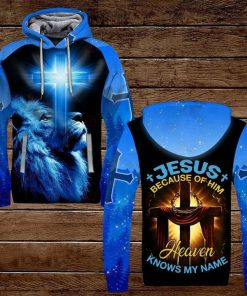 Jesus Because Of Him Heaven Knows My Name Lion 3D All Over Print Hoodie1