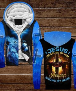 Jesus Because Of Him Heaven Knows My Name Lion 3D All Over Print Hoodie3