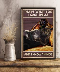 That's what I do I cast spells and I know things Witch Cat poster 3