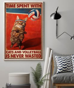 Time spent with cats and volleyball is never wasted poster1