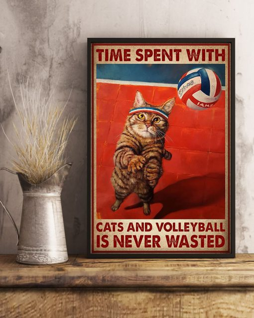 Time spent with cats and volleyball is never wasted poster2