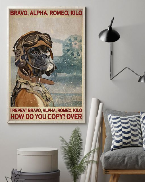 Bravo alpha romeo kilo I repeat bravo alpha romeo kilo How do you copy over Dog Pilot poster1