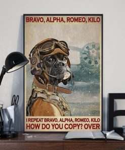 Bravo alpha romeo kilo I repeat bravo alpha romeo kilo How do you copy over Dog Pilot poster2