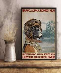 Bravo alpha romeo kilo I repeat bravo alpha romeo kilo How do you copy over Dog Pilot poster3
