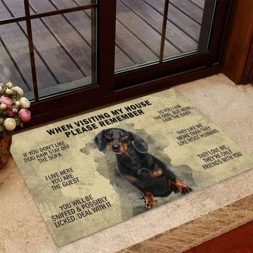 Dachshund When visiting my house please remember doormat