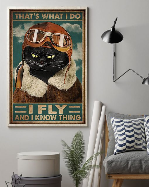 That's what I do I fly and I know things Cat Pilot poster 2