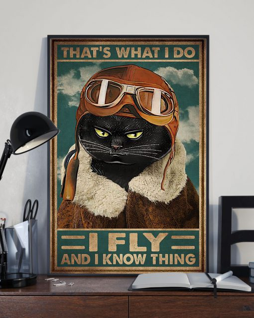 That's what I do I fly and I know things Cat Pilot poster 3
