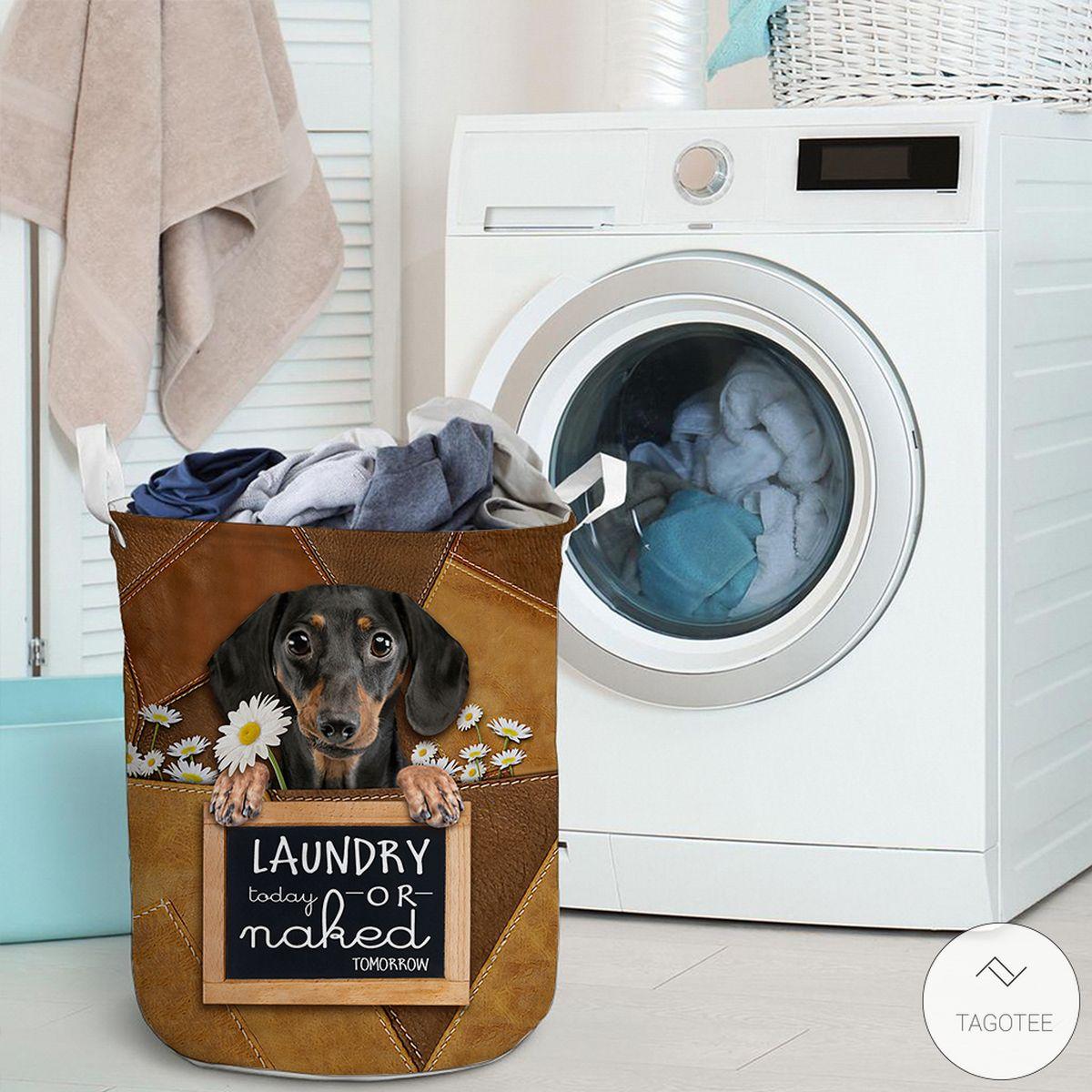 Dachshund Laundry Today Or Naked Tomorrow Laundry Basketz