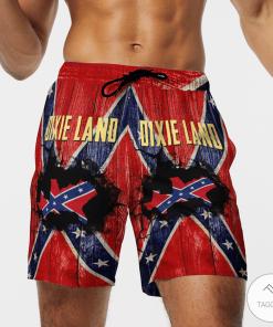 Dixie Land Confederate Flag 3D Hawaiian Beach Short