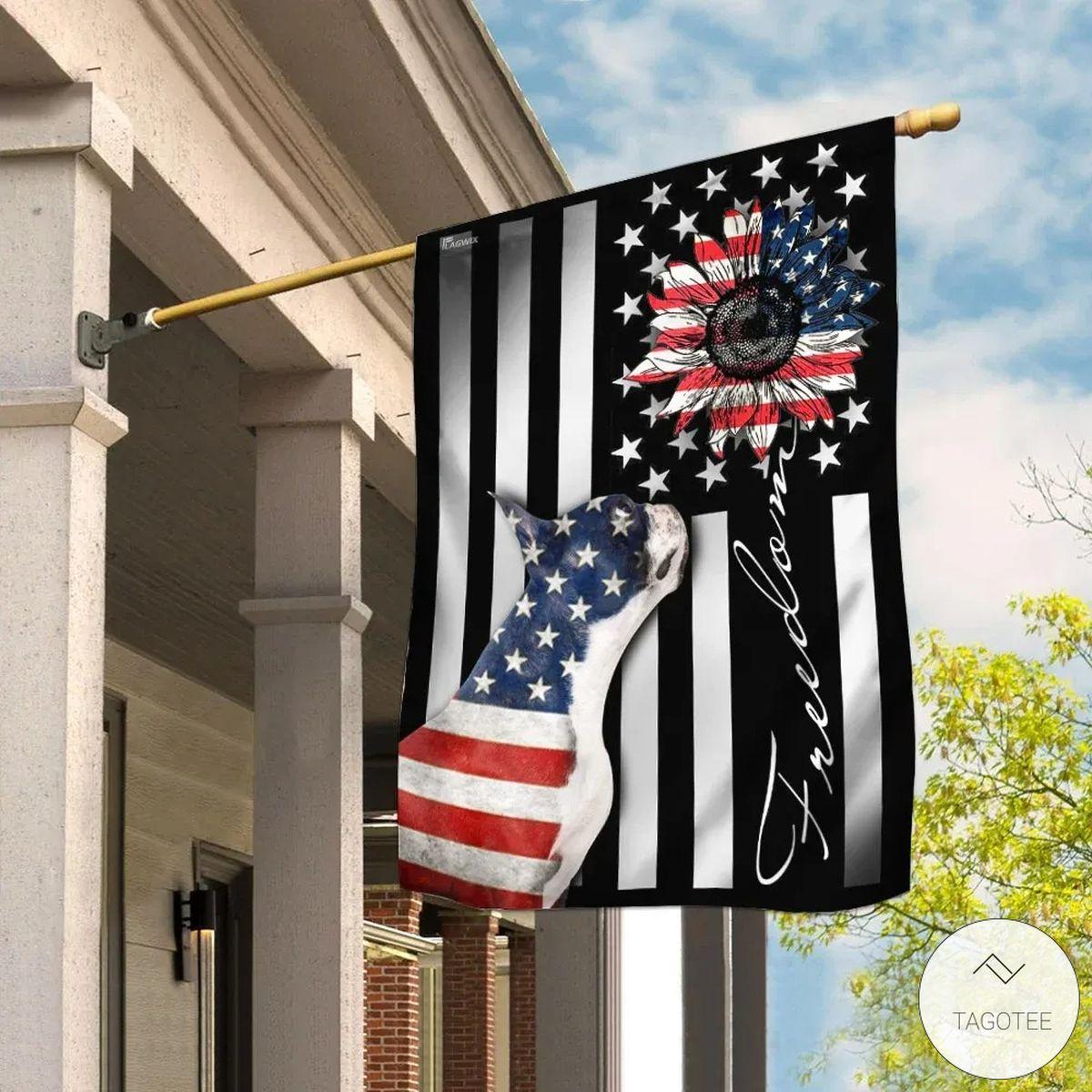 Boston Terrier Freedom American Flag