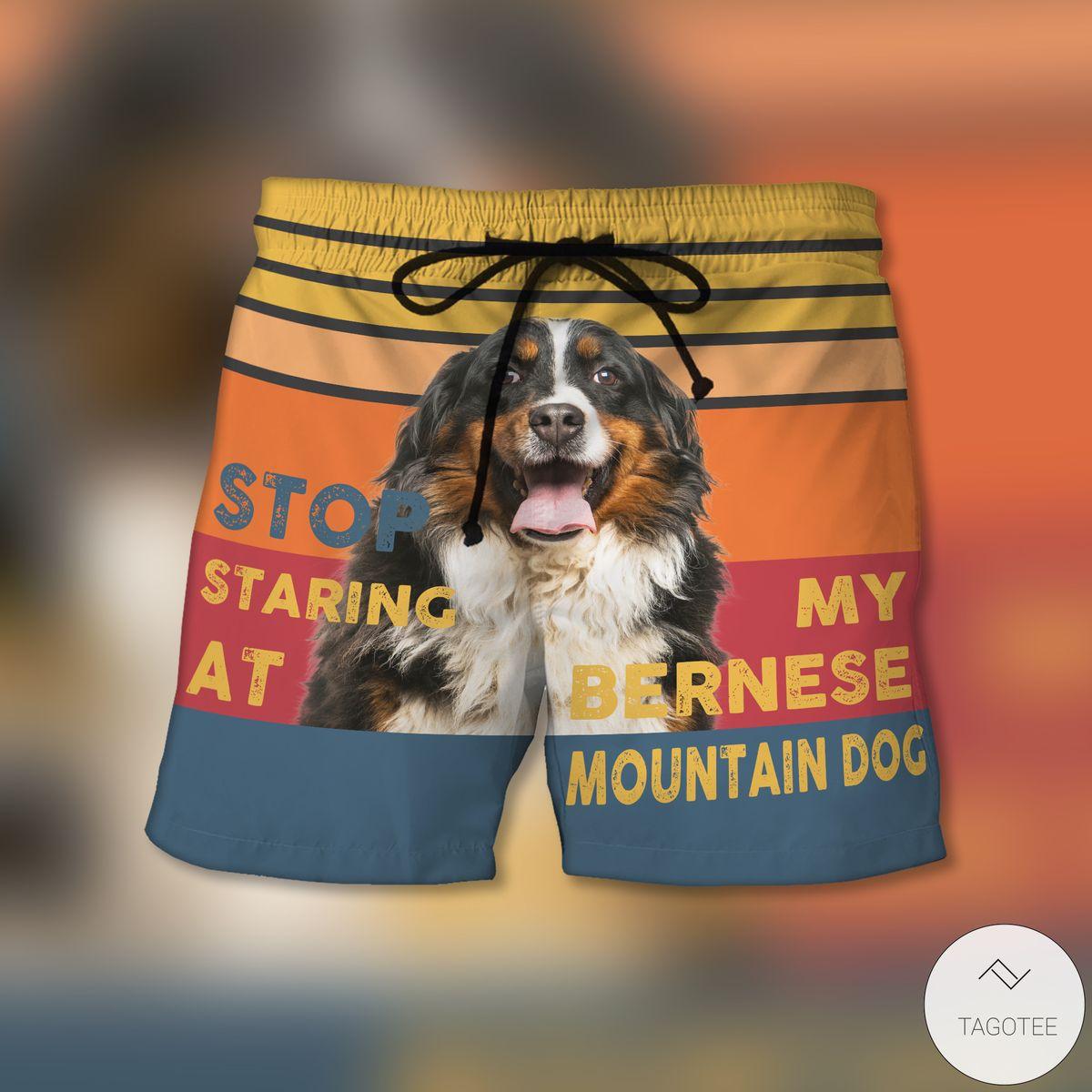 Stop Staring At My Bernese Mountain Dog Shorts