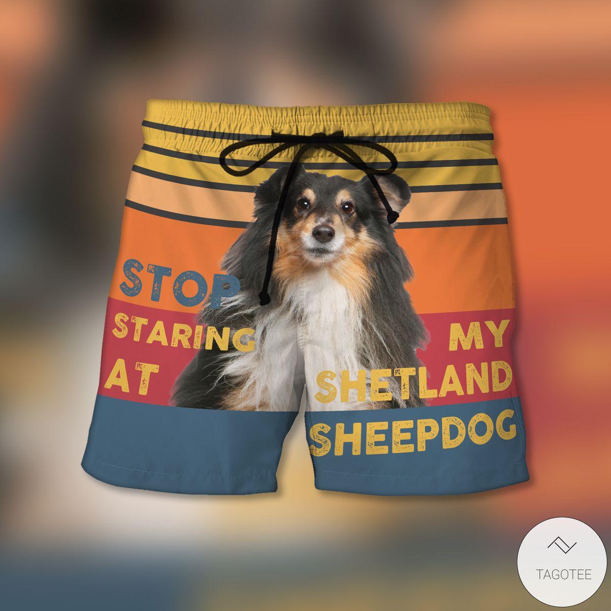 Stop Staring At My Shetland Sheepdog Shorts