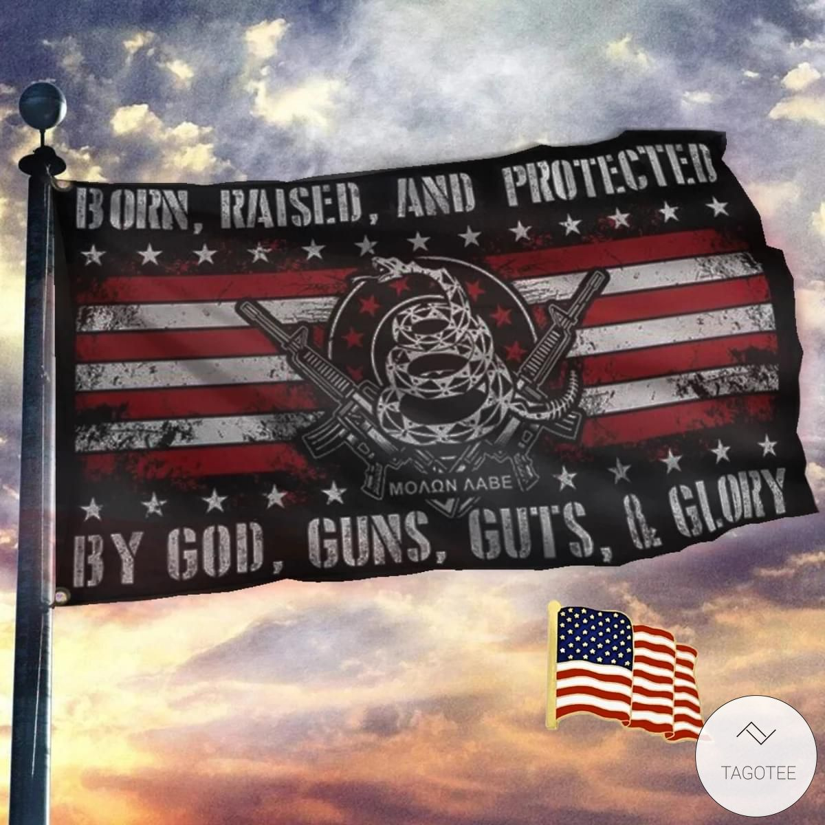 Born Raised And Protected By God Guns Guts And Glory Flag