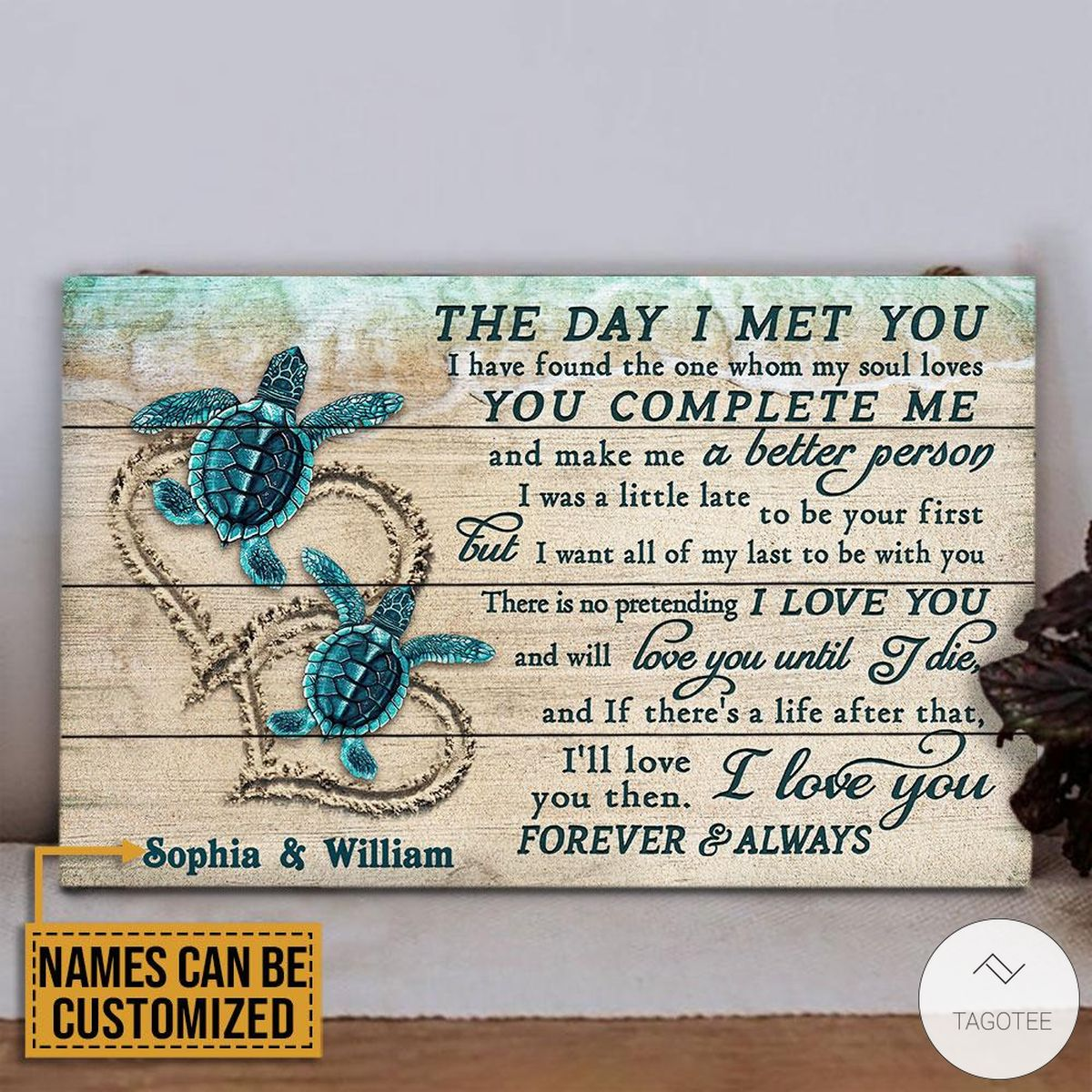 Personalized Sea Turtle The Day I Met You Rectangle Wood Sign z