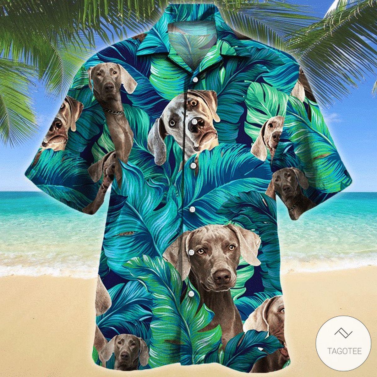 Weimaraner Dog Hawaiian Shirt