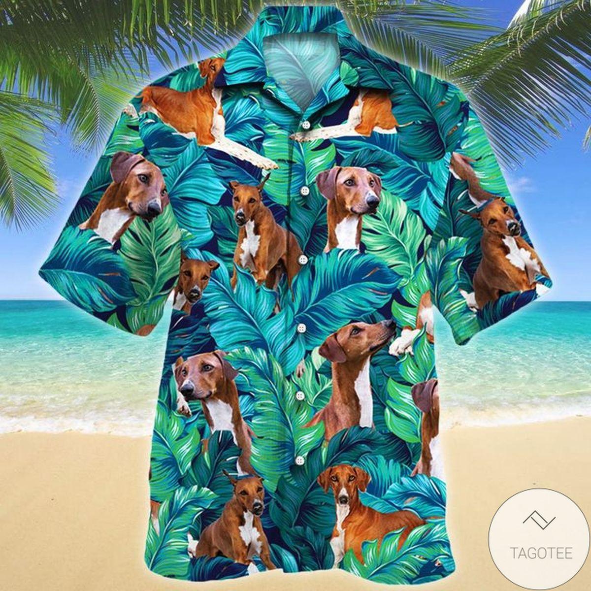Azawakh Dog Lovers Hawaiian Shirt