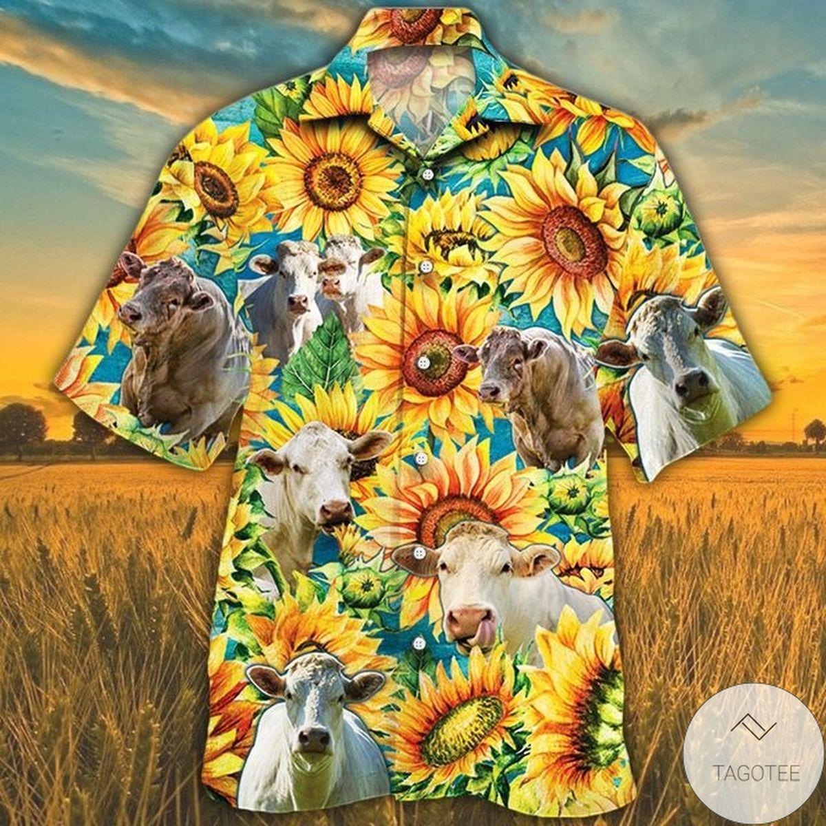 Charolais Cattle Lovers Sunflower Watercolor Hawaiian Shirt