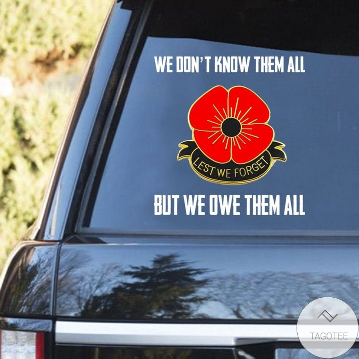 We Don't Know Them All But We Owe Them All Decal