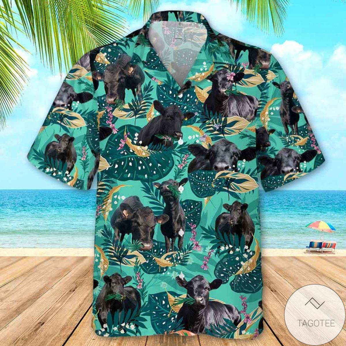 Black Angus Cattle Fun Rosemary Hawaiian Shirt