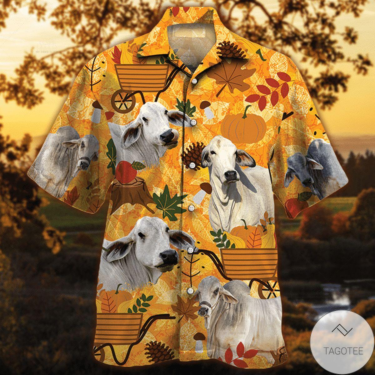 Brahman Cattle Lovers Orange Nature Autumn Hawaiian Shirt