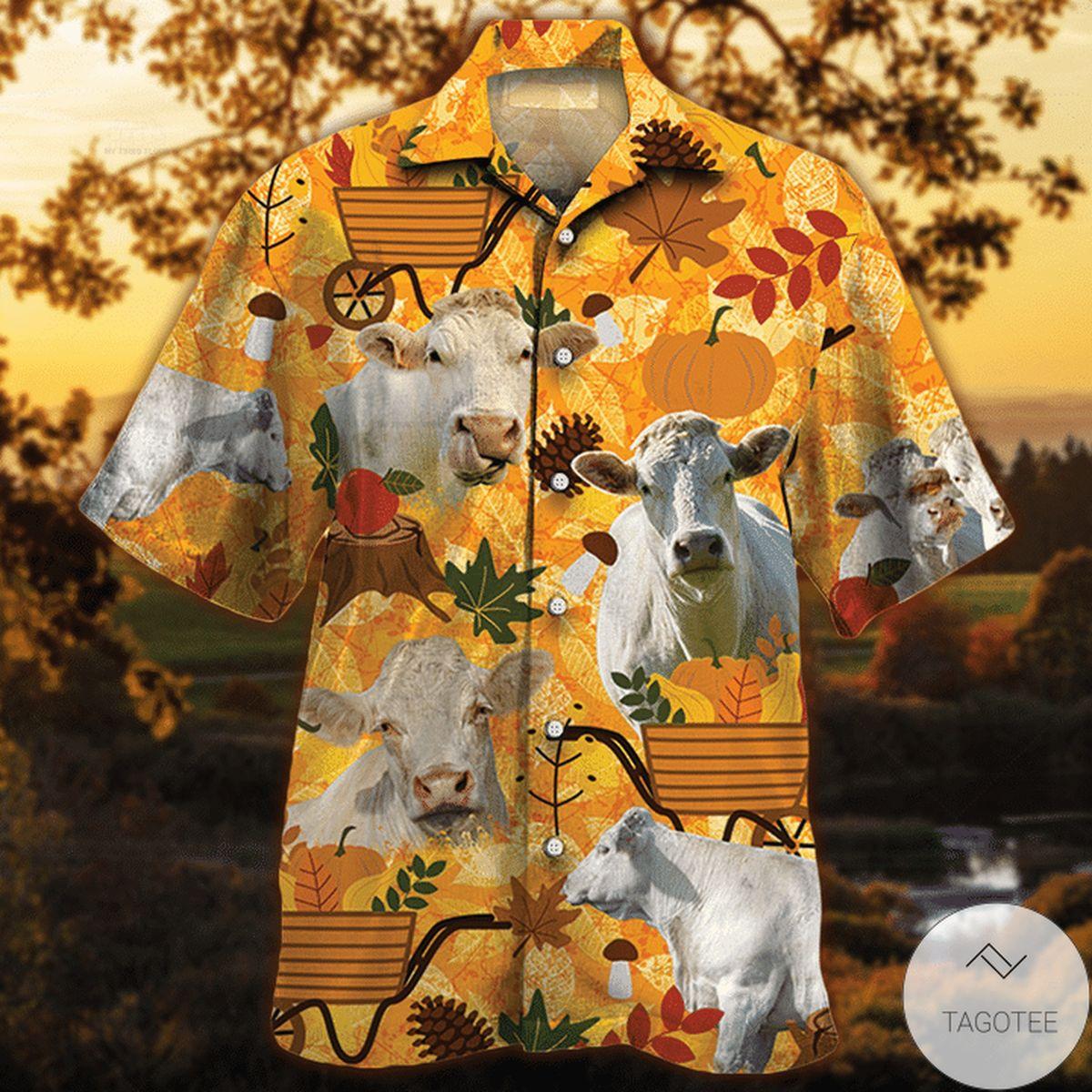 Charolais Cattle Lovers Orange Nature Autumn Hawaiian Shirt