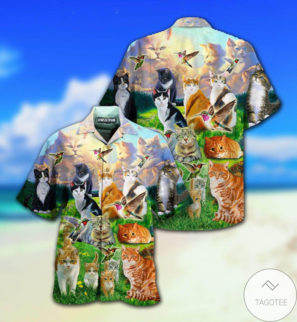 All Cats Go To Heaven Hawaiian Shirt