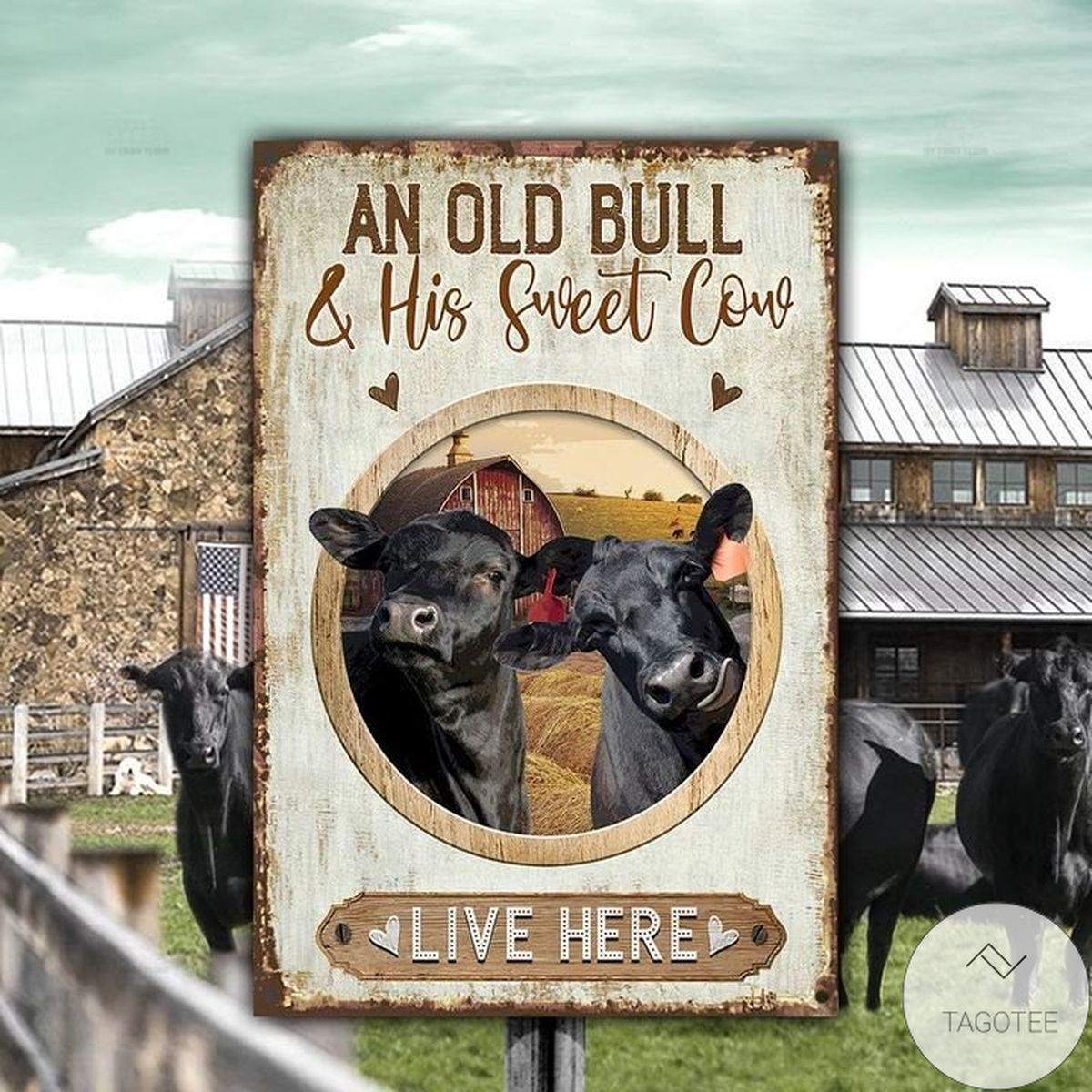 Black Angus Cattle Old Bull And Sweet Cow Live Here Metal Sign