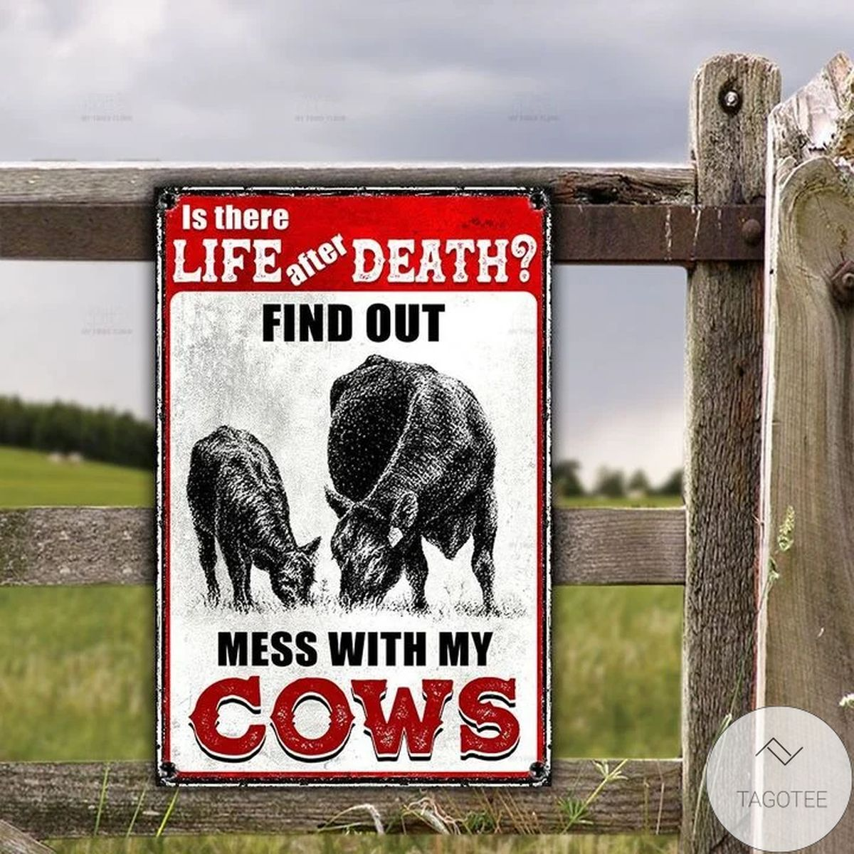 Black Angus Lovers Is There Life After Death Funny Warning Metal Sign
