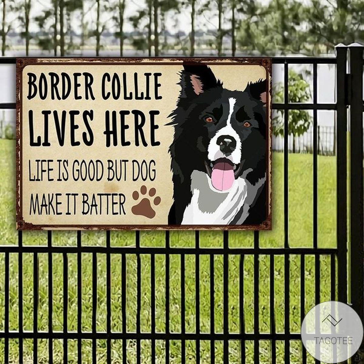 Border Collie Lives Here Life Is Good But Dog Make It Batter Metal Sign
