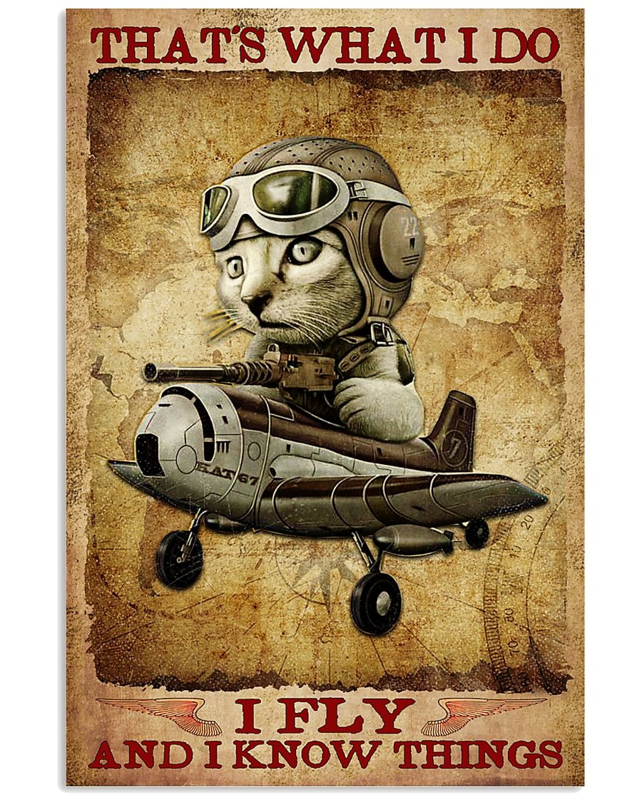 Cat Pilot That's What I Do I Fly And I Know Things Poster 2
