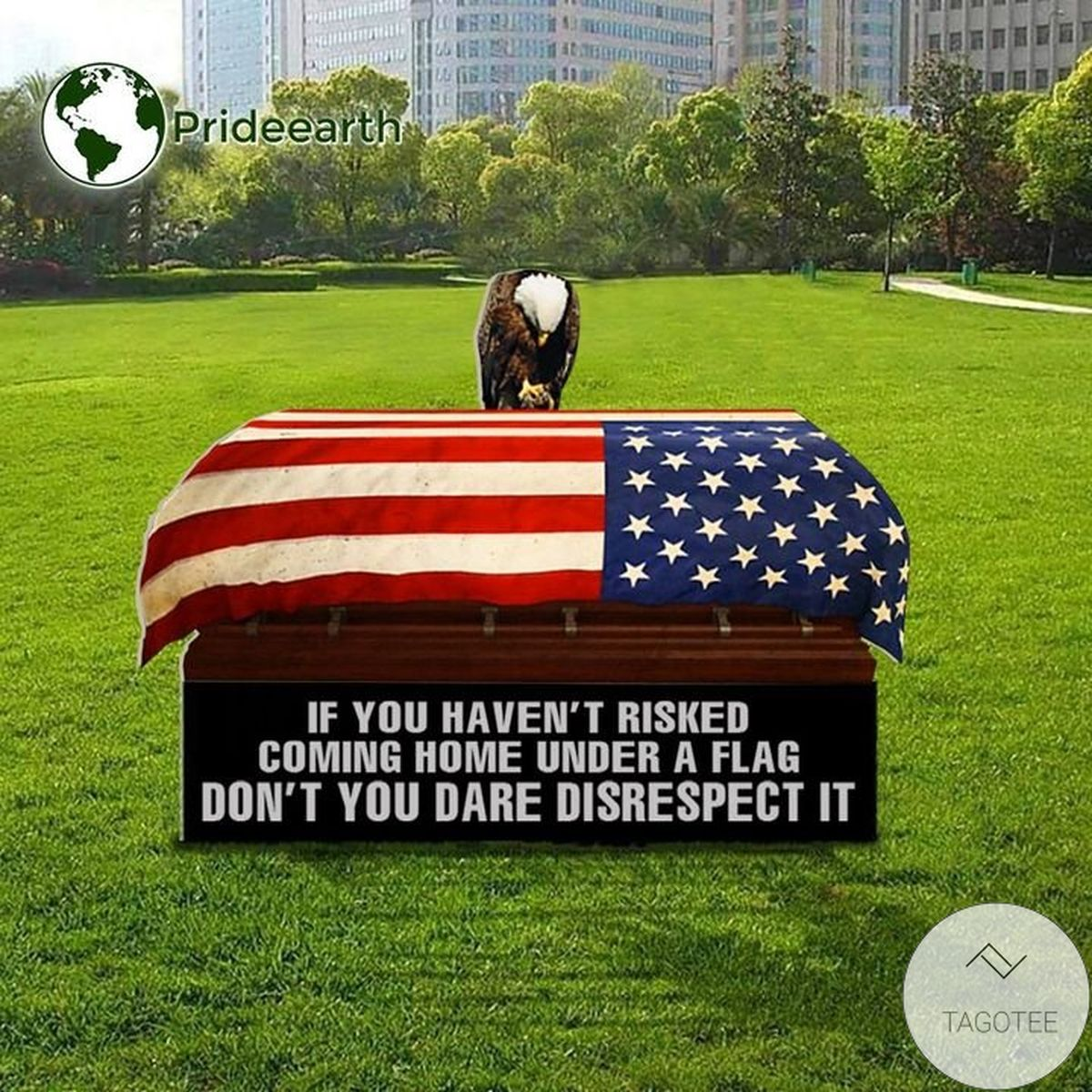 Don't You Dare Disrespect It Eagle American Flag Yard Sign