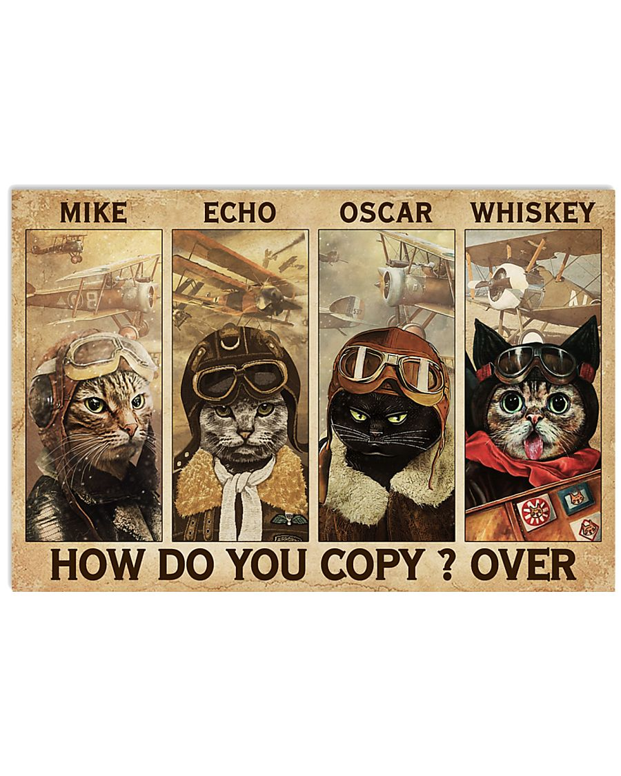 Mike Echo Oscar Whiskey How Do You Copy Over Poster