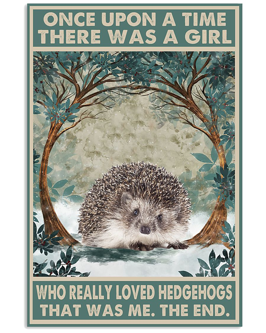Once upon a time there was a girl who really loved Hedgehog That was me poster