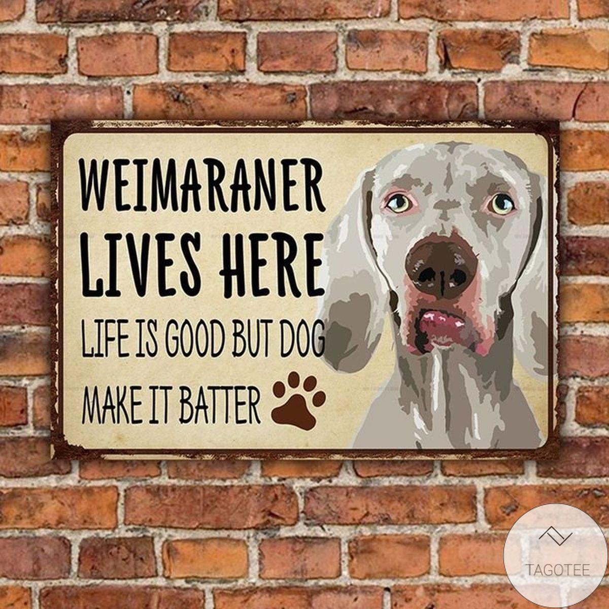 Weimaraner Lives Here Life Is Good But Dog Make It Batter Metal Sign